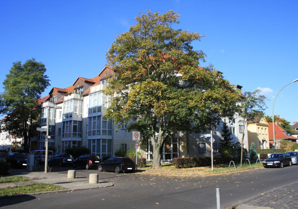 Quartier Rheinsteinpark